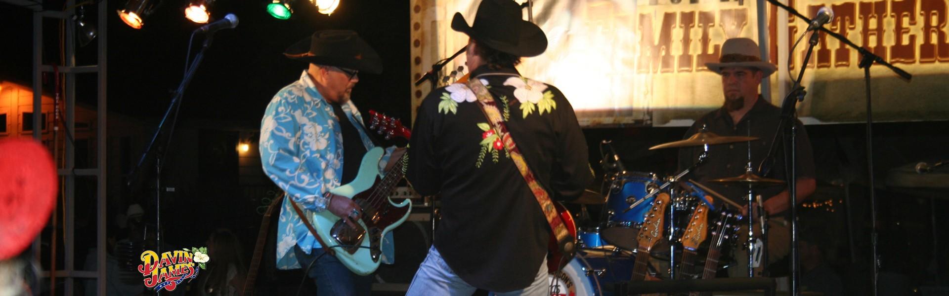Davin James & The Bullnettle Band
